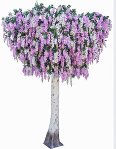 Wisteria Bridal Tree