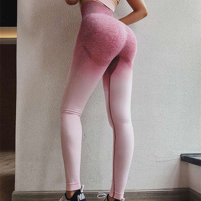 Sport Suit Gym Workout Clothes