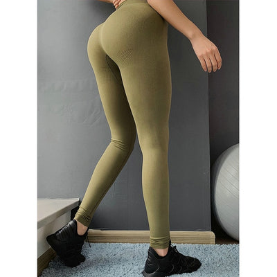Seamless Leggings Gym Workout Tights