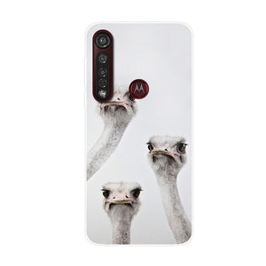 Connections Shockproof Silicone for Motorola Moto G8