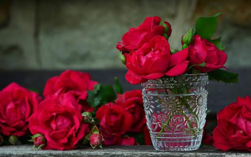 5 Ways to Make Your Red Roses Last Longer