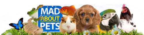 Mad About Pets Web Banner