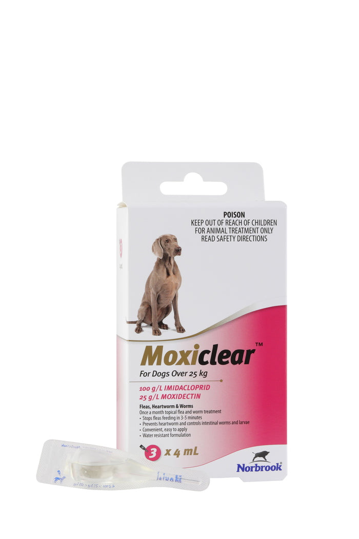 Moxiclear For Dogs Over 25Kg