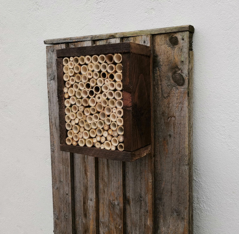 Insect House/ Bee Hotel