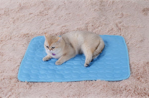 Prosdays © Luxury Cooling Pet Mat