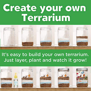 Light-up Terrarium Kit for Kids with LED Light on Lid Create Your Own Customized Mini Garden in a Jar That Glows at Night Science Kits for Kids Gardening Gifts