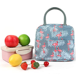Lunch Bag Cooler Tote Bag Luch Box Lunch Container Lunch Organizer, Lunch Holder with Front Pocket Zipper Closure