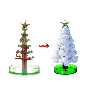 Magic Growing Christmas Tree Large 7inch x 9inch