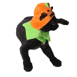 Pet Pumpkin Hat Halloween Cosplay Props For Dog Cat
