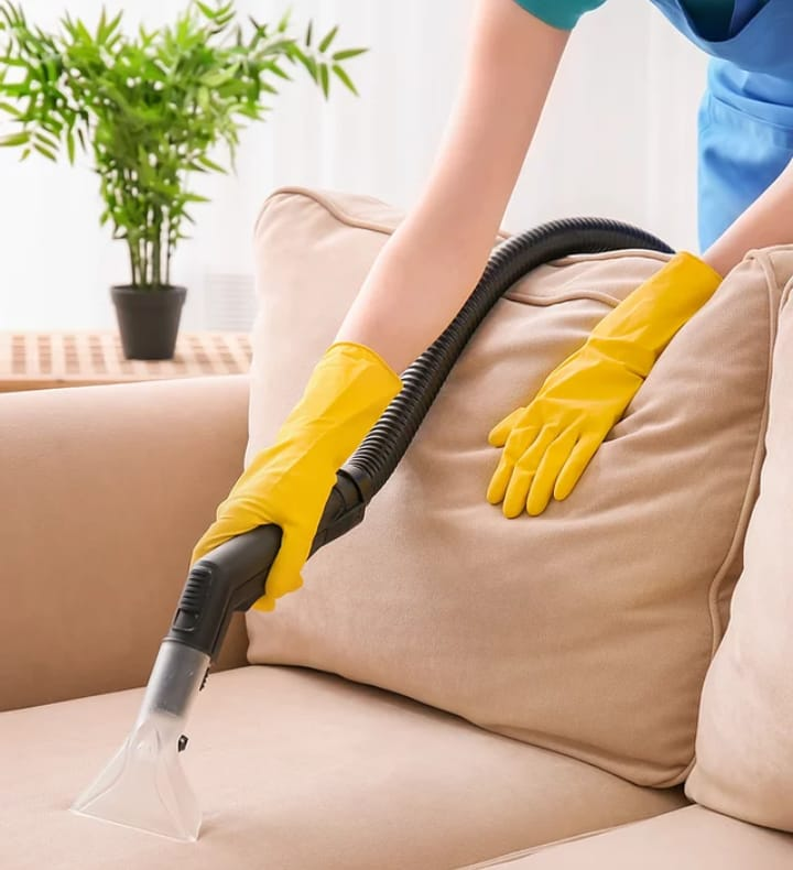 Nelson professional cleaning services