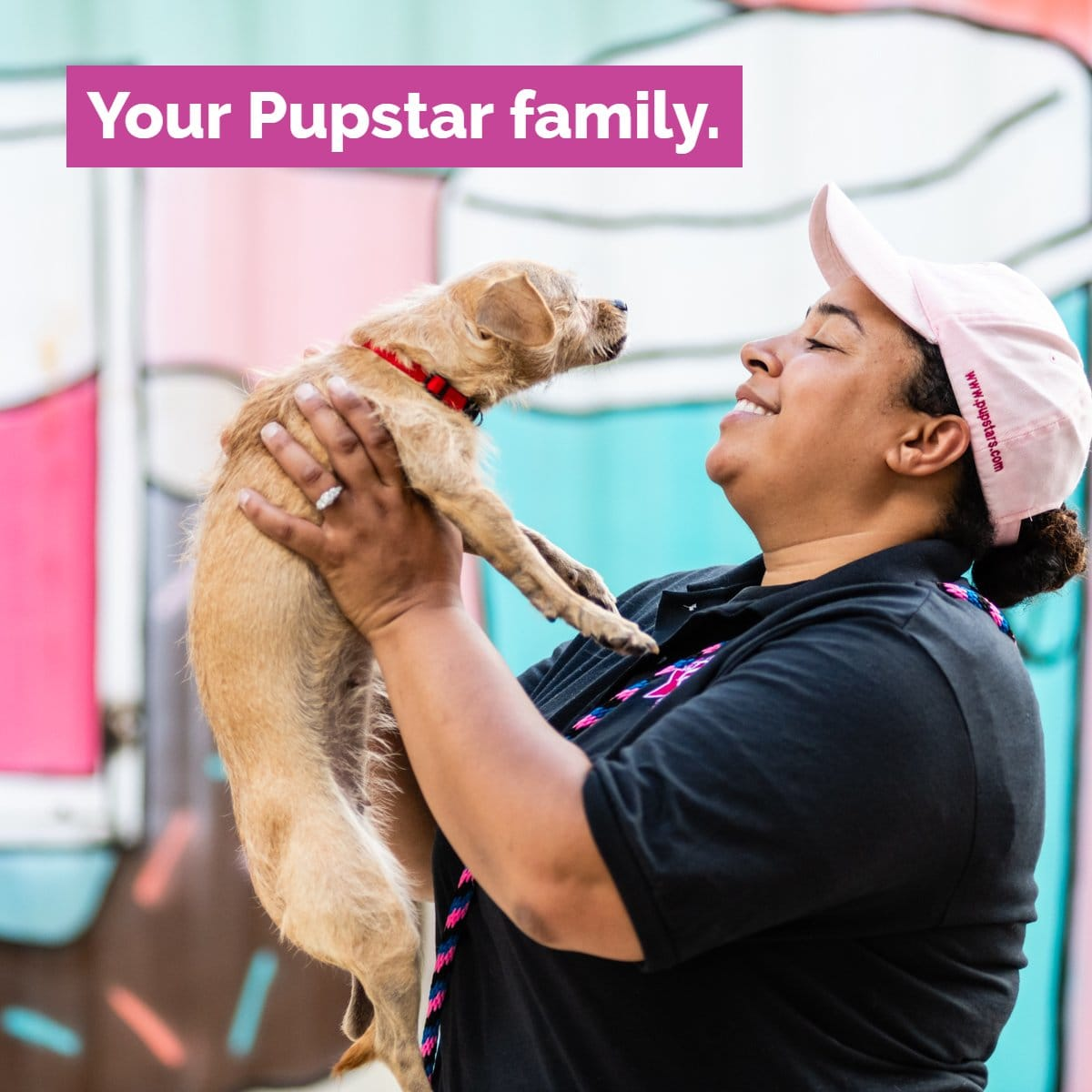 Pupstars pet care