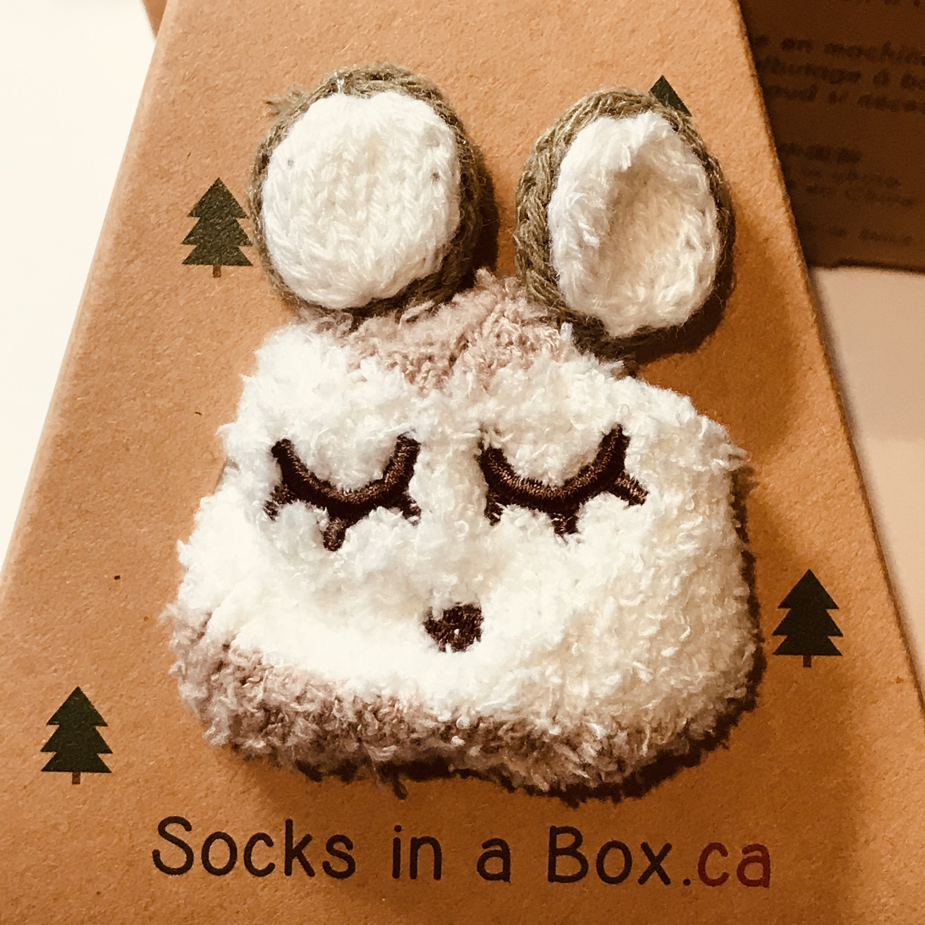 Brown Bear Socks in a Box for Young Children