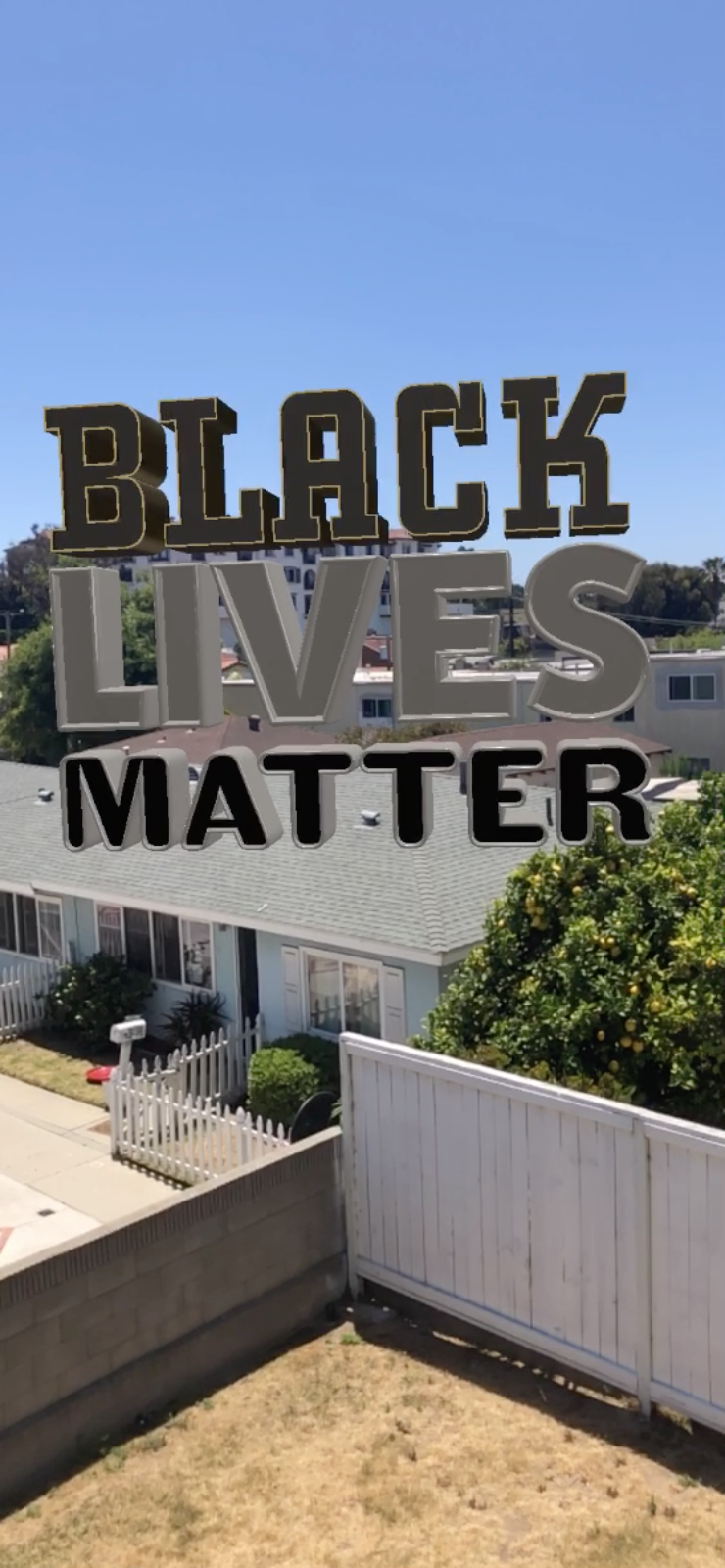 Black Lives Matter Lock-Up