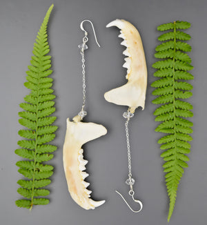 Marten Mandible & Herkimer Diamond Earrings