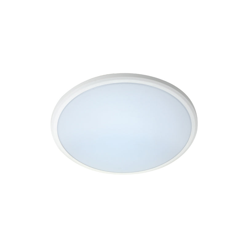 EVD - 20W Button - Dimmable