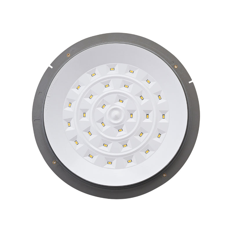 Round Ceiling/Wall Light