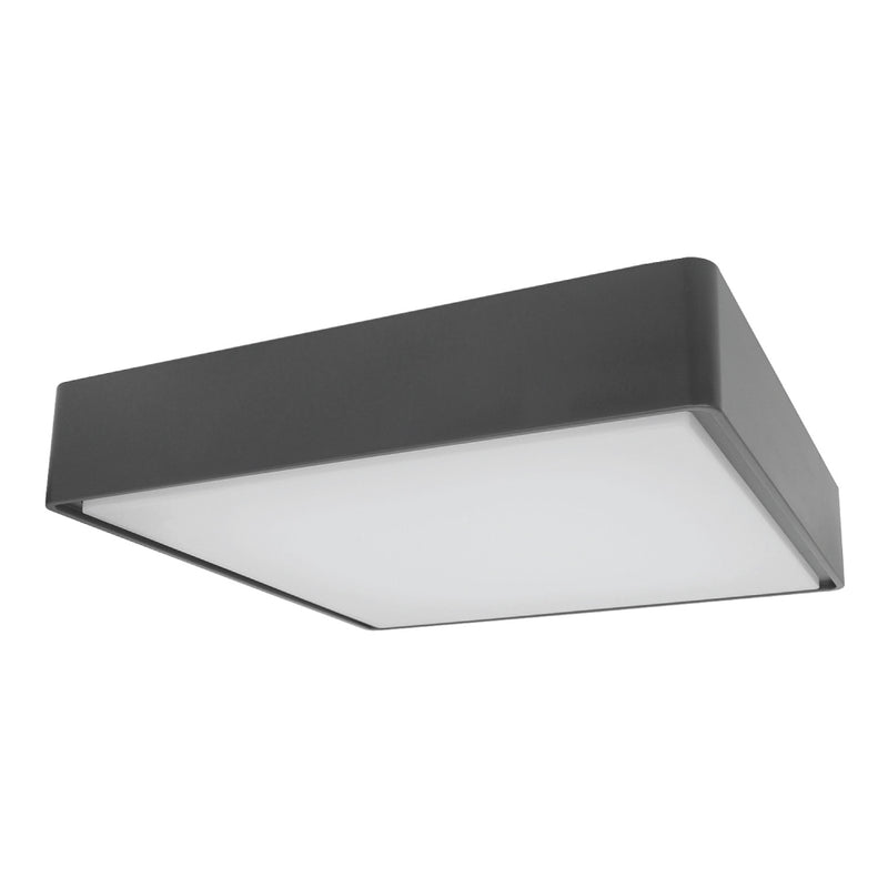 Square Ceiling/Wall Light