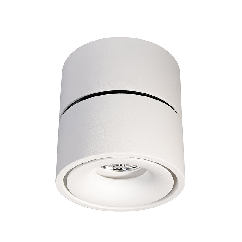 Bijou - Single Swivel Downlight