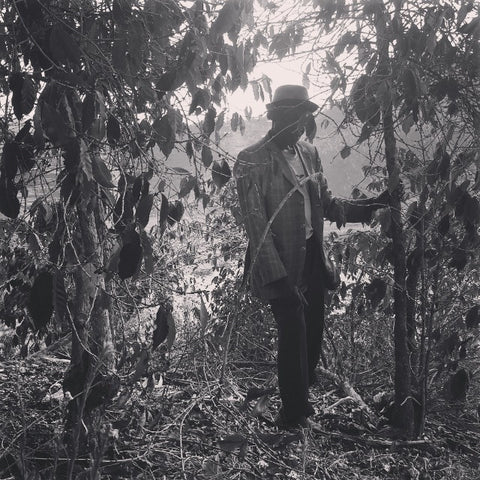A man and his trees - Iidephonse Ngendahayo planted his trees in 1984 and are still harvesting from them.