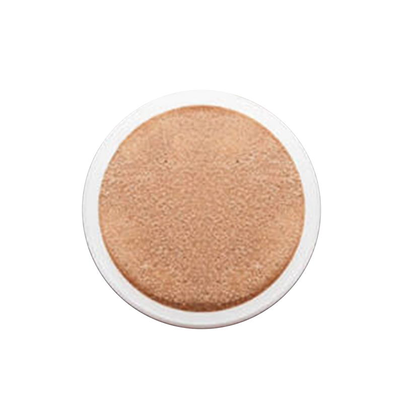 Air Cushion Foundation Refill
