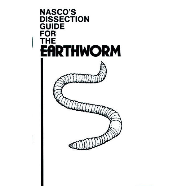 Worm Dissection Guide