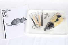 Rat Dissection Kit