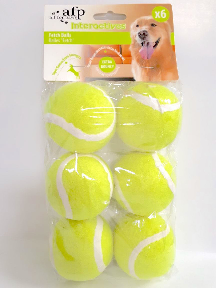 All for Paws Fetch Balls - 6 pcs