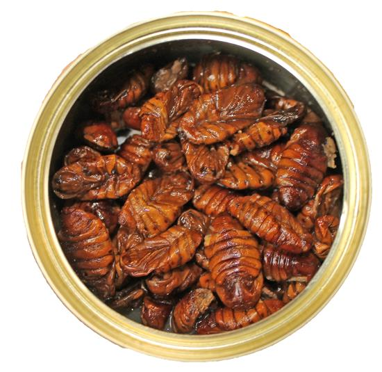 Canned Silkworms Pupae