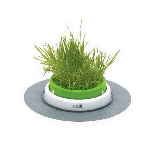 Hagen Catit Senses 2.0 Grass Planter