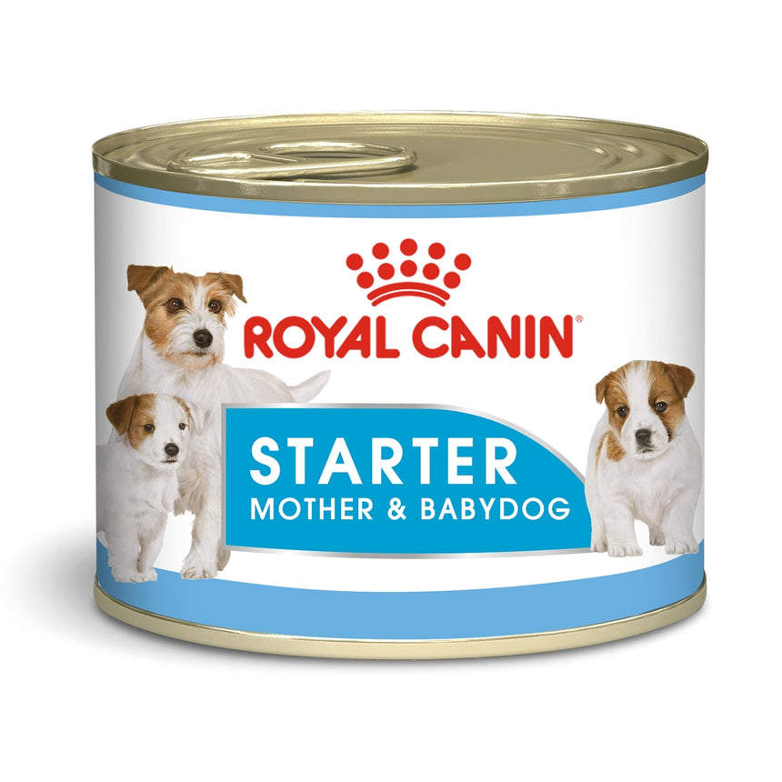 Royal Canin Starter Mousse Wet Food (12x195g)