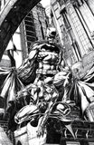 BATMAN CATWOMAN #1 (OF 12) BLANK DOUBLE COVER DAVID FINCH EXCLUSIVE  (12/01/20) SHIPS (12/14/20)