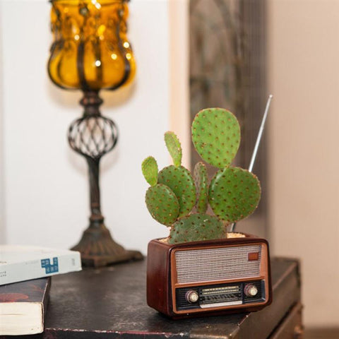 Radio Flower Pot