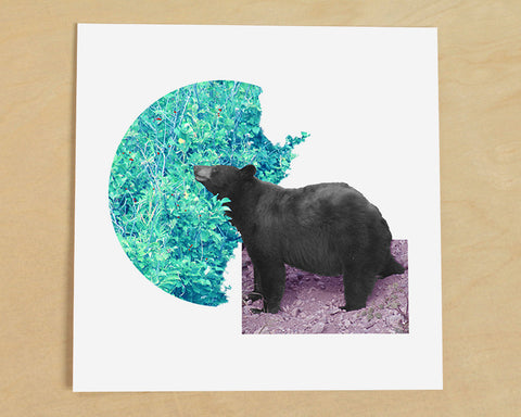 Bear with Berries Photo Collage Art Print