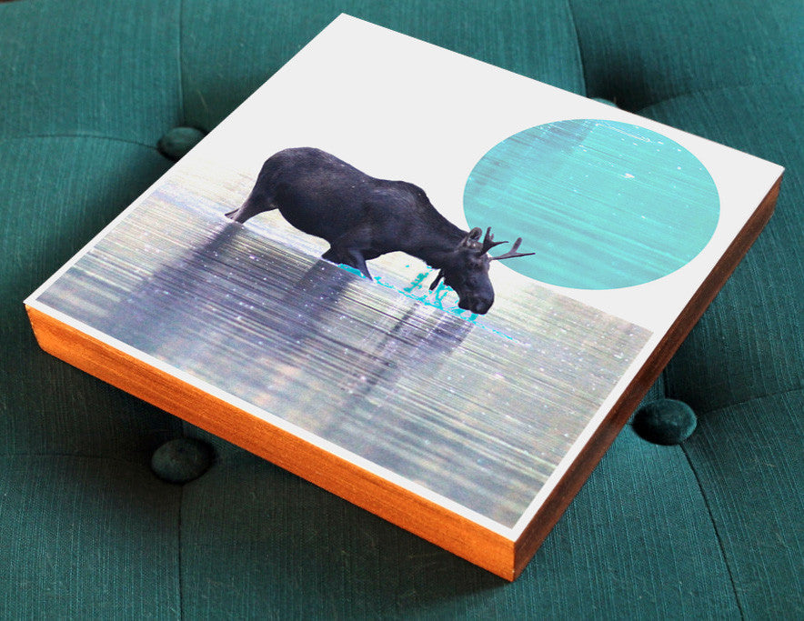 Moose in Water Woodblock-Mounted Photo Collage - Salty Lyon - 1