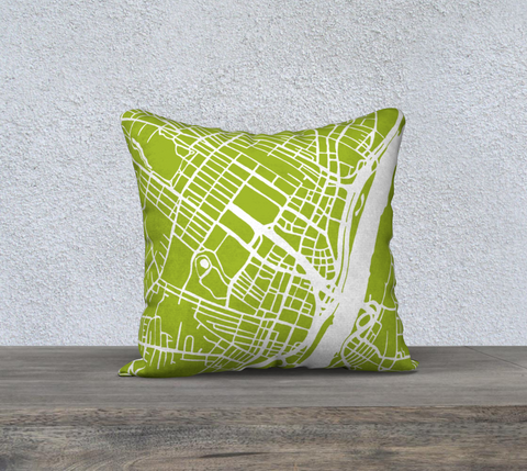 Albany Map Pillow in Lime