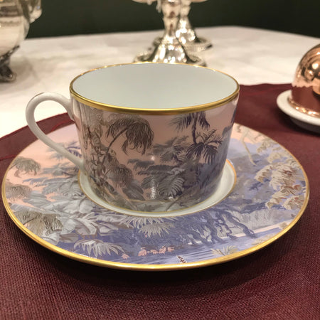 Haviland le Brésil manufacture Zuber The Tasse