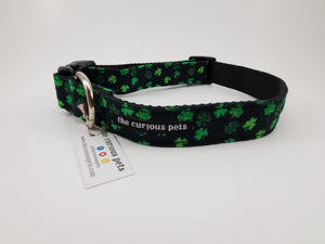 The Curious Pets Small Shamrock Dog Collar