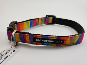 The Curious Pets Bright Stripes Dog Collar