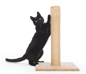 Pet Craft Cat Scratching Post 2'