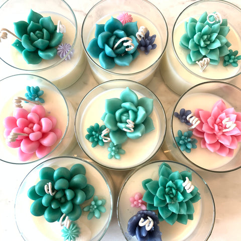 Succulent Candle made with Soy/Beeswax blend (Sea Salt and Orchid scented)