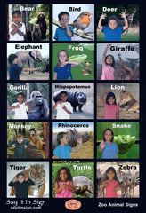 Zoo Animal Signs Poster - ASL Lenticular Poster