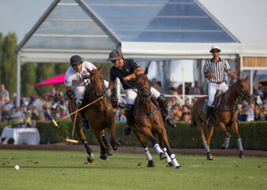 Play Polo in Deauville