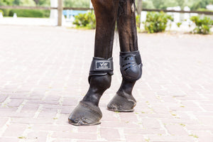 LAMI-CELL Tendon & Hind Boot V22 Package + free Halter