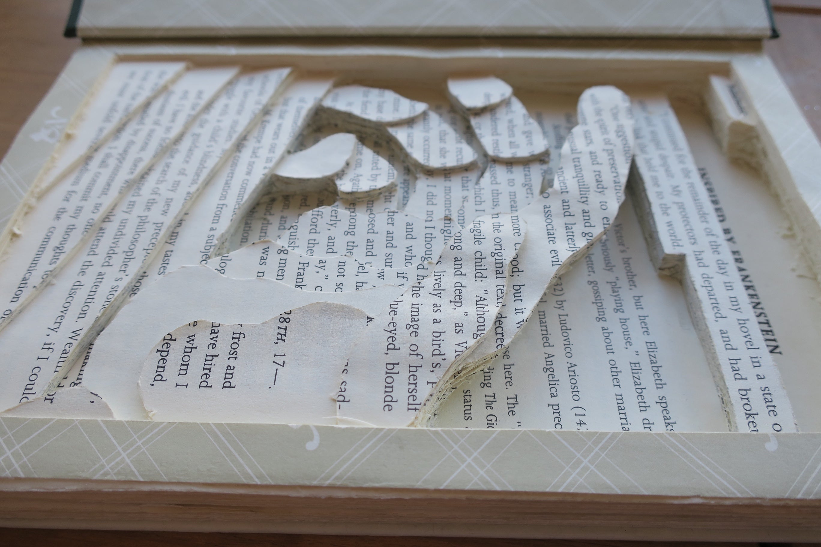 Frankenstein Book Carving