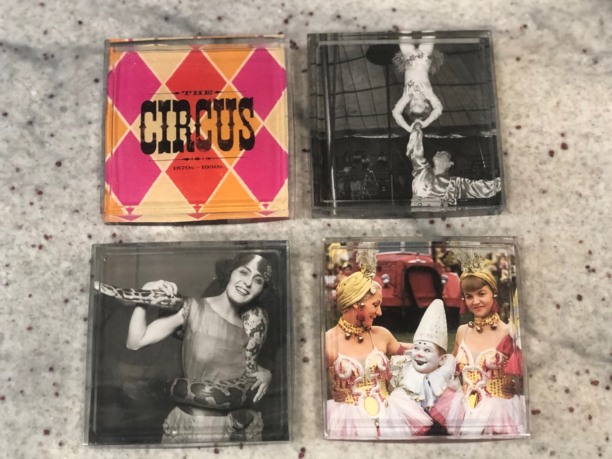 Circus Coasters Set of 4