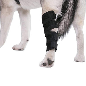 Canine Dog Hock Brace Rear Leg Joint Wrap Protects