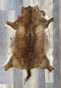 Sheep Pelt #1902