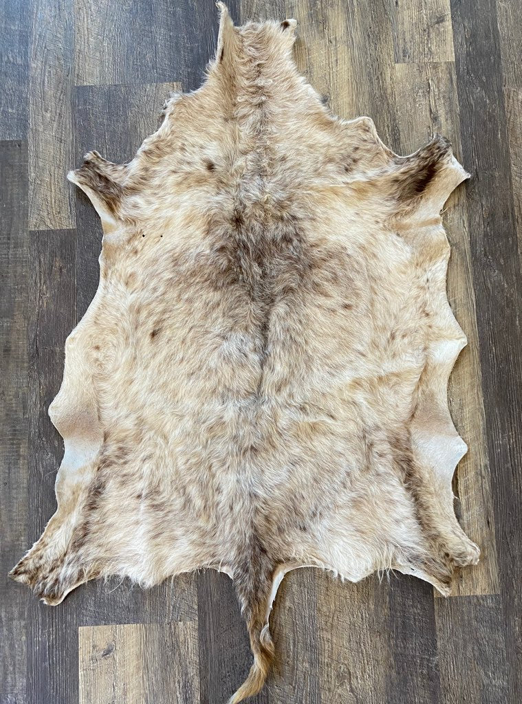 Sheep Pelt #1904