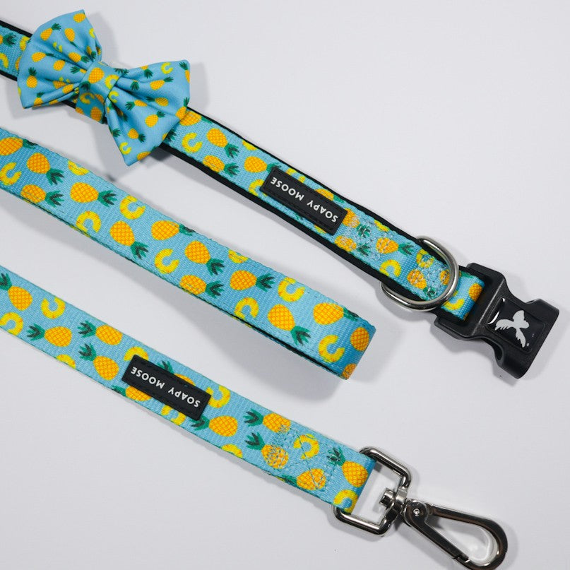 SOAPY MOOSE - Pineapple Slices Double Sided Leash
