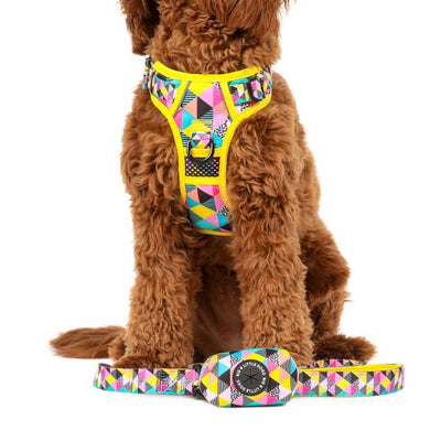 BIG & LITTLE DOGS - All-Sorts Dog Poop Bag Holder